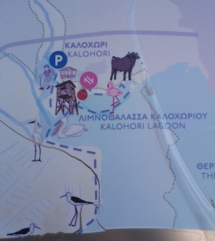 Национальный парк Дельта Аксьос-Лудиас-Альякмон лагуна Калохори
